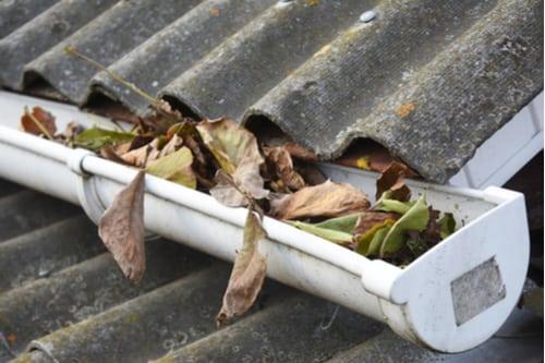 blade i tagrende